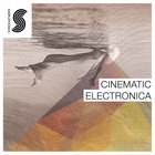 Cinematic_electronica-1000