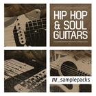Rv_hip_hop___soul_guitars_1000_x_1000