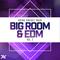 Big room   edm vol 2 1000x1000