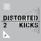 Riemann distorted kickdrums 2 cover artwork