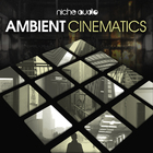 Niche ambient cinematics 1000 x 1000