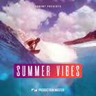 Pm   summer vibes   artwork 1000 x 1000