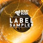 Sr sampler4