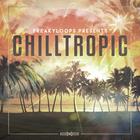 Frk cht chilltropic futurehouse 1000x1000