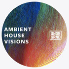 Ambient house visions 1000x